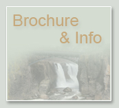 brochure and info